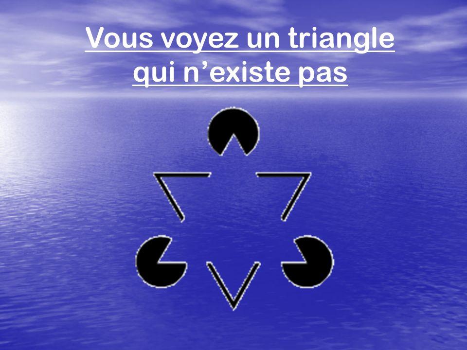 Vous voyez un triangle qui n'existe pas