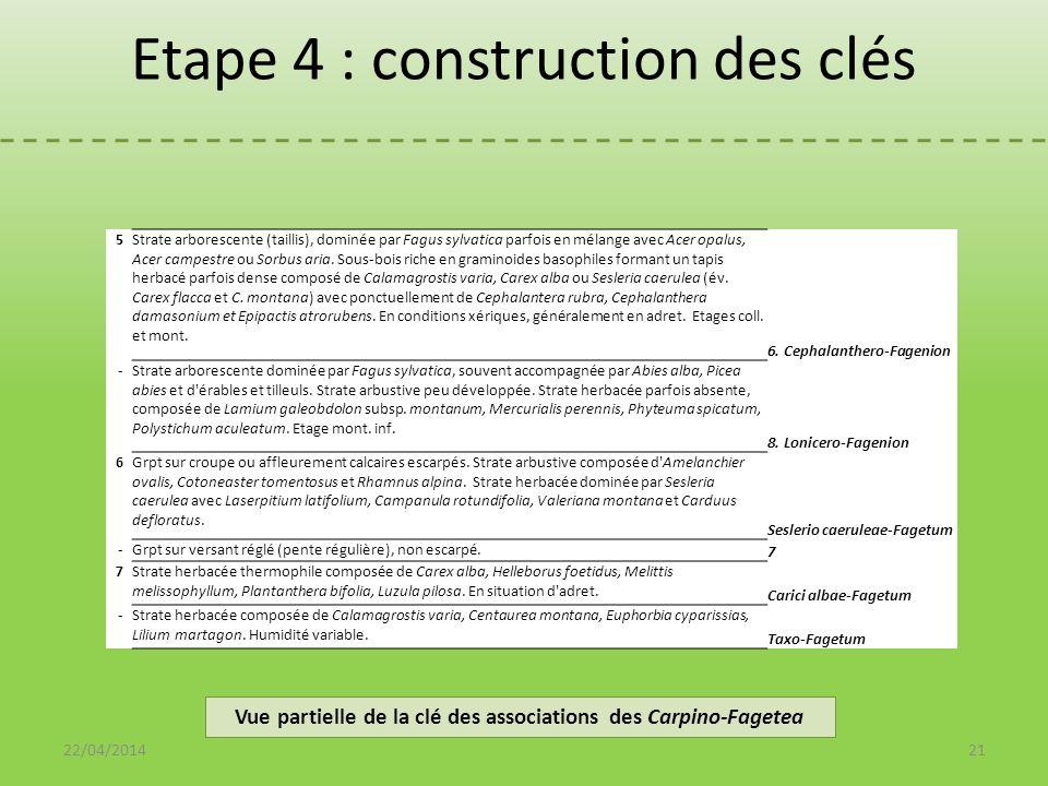 Vue partielle de la clé des associations des Carpino-Fagetea