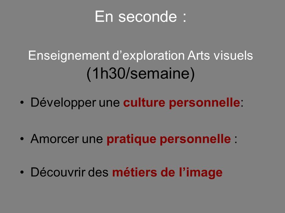 En seconde : Enseignement d'exploration Arts visuels (1h30/semaine)