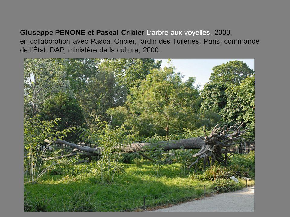 Giuseppe PENONE et Pascal Cribier L'arbre aux voyelles, 2000, en collaboration avec Pascal Cribier, jardin des Tuileries, Paris, commande de l État, DAP, ministère de la culture, 2000.