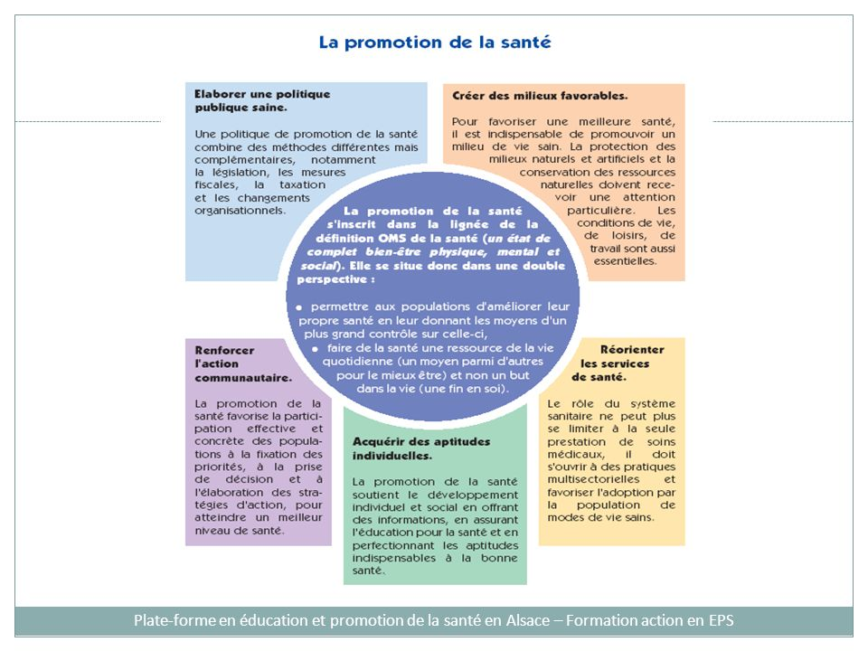 Plate-forme en éducation et promotion de la santé en Alsace – Formation action en EPS