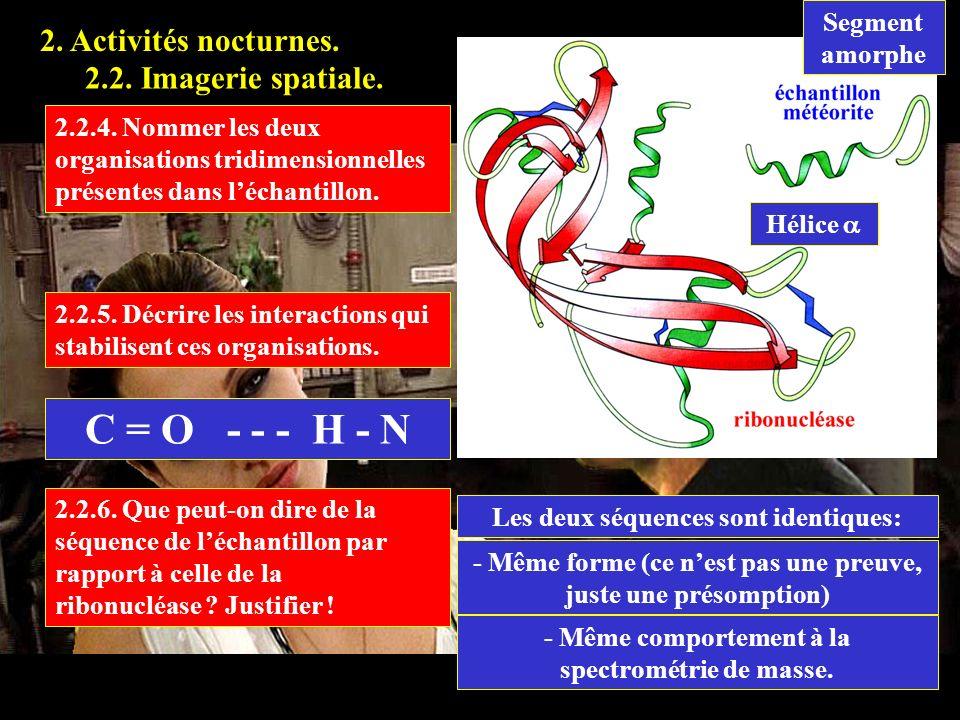 2.2.4 C = O - - - H - N 2. Activités nocturnes.