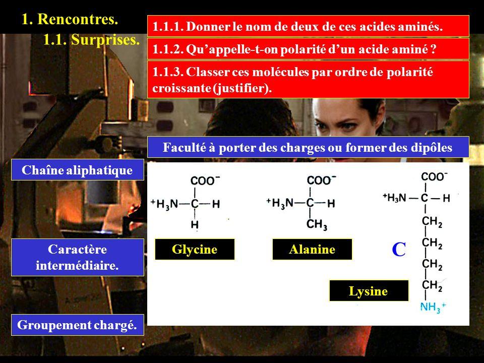 1. Rencontres. 1.1.1. Donner le nom de deux de ces acides aminés. 1.1. Surprises. 1.1.2. Qu'appelle-t-on polarité d'un acide aminé