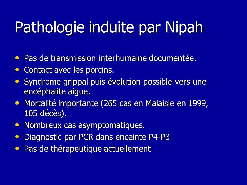 Pathologie induite par Nipah
