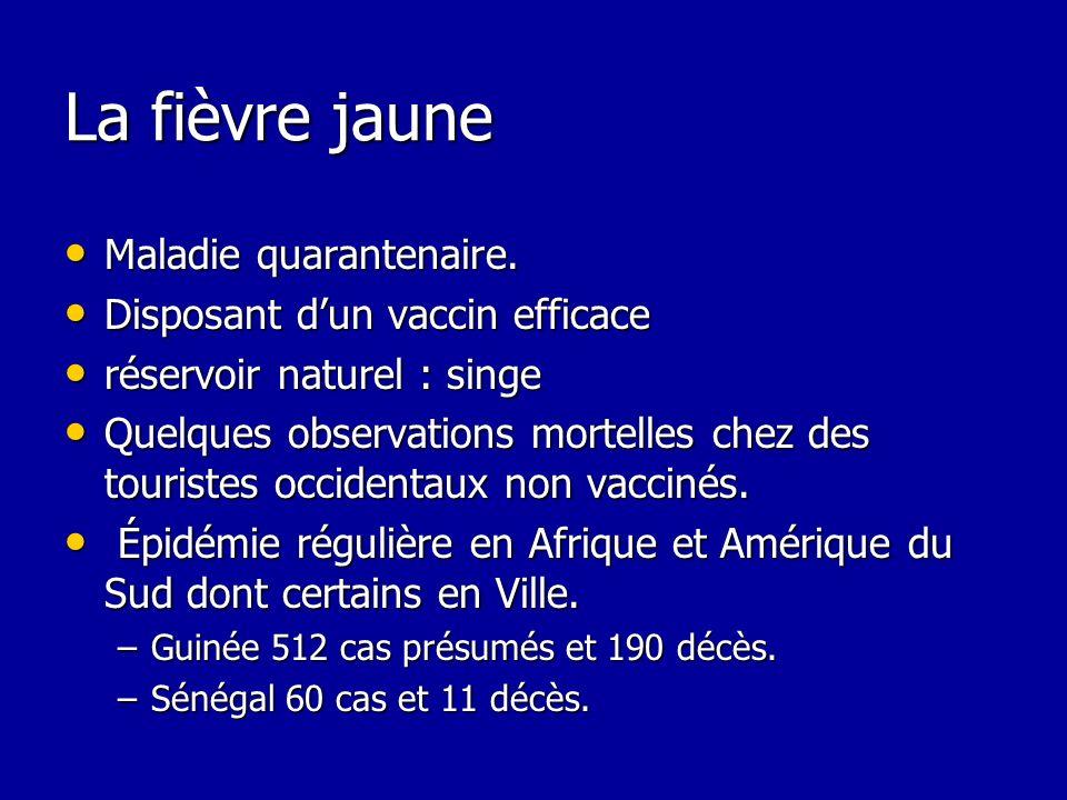 La fièvre jaune Maladie quarantenaire. Disposant d'un vaccin efficace