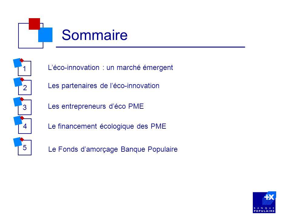 Sommaire 1 L'éco-innovation : un marché émergent 2