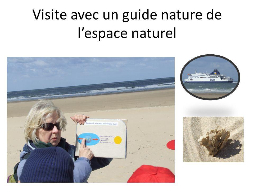 Visite avec un guide nature de l'espace naturel