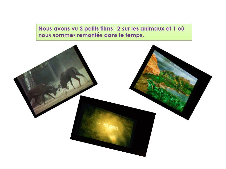 Nous avons vu 3 petits films : 2 sur les animaux et 1 où nous sommes remontés dans le temps.
