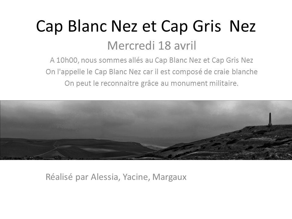 Cap Blanc Nez et Cap Gris Nez
