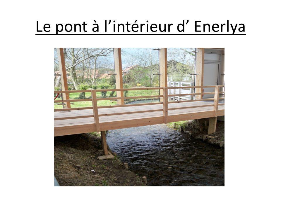 Le pont à l'intérieur d' Enerlya