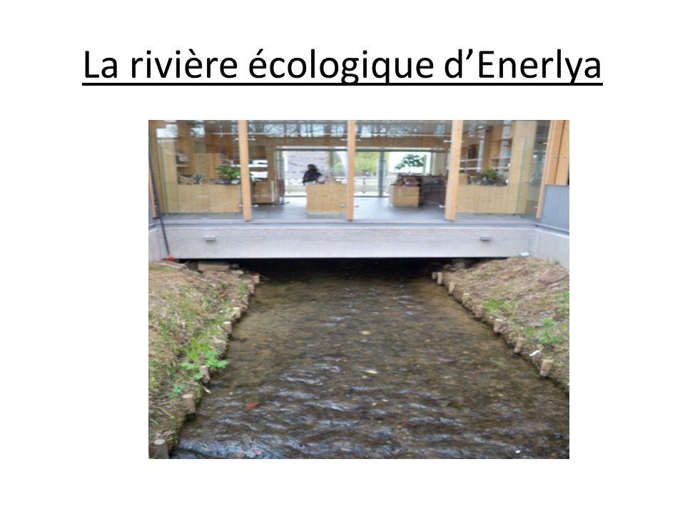 La rivière écologique d'Enerlya