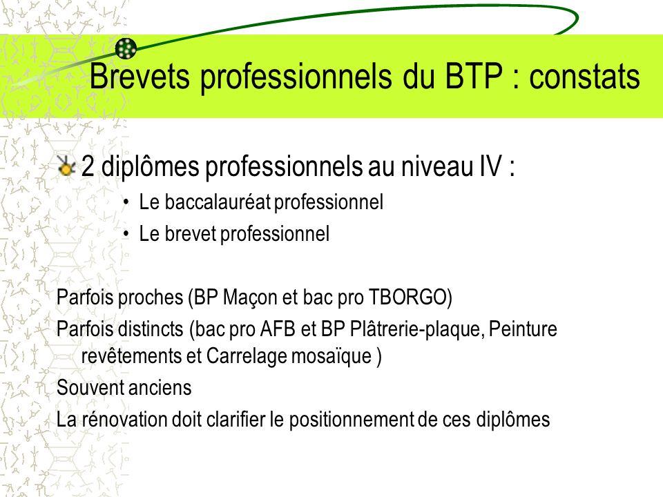 Brevets professionnels du BTP : constats
