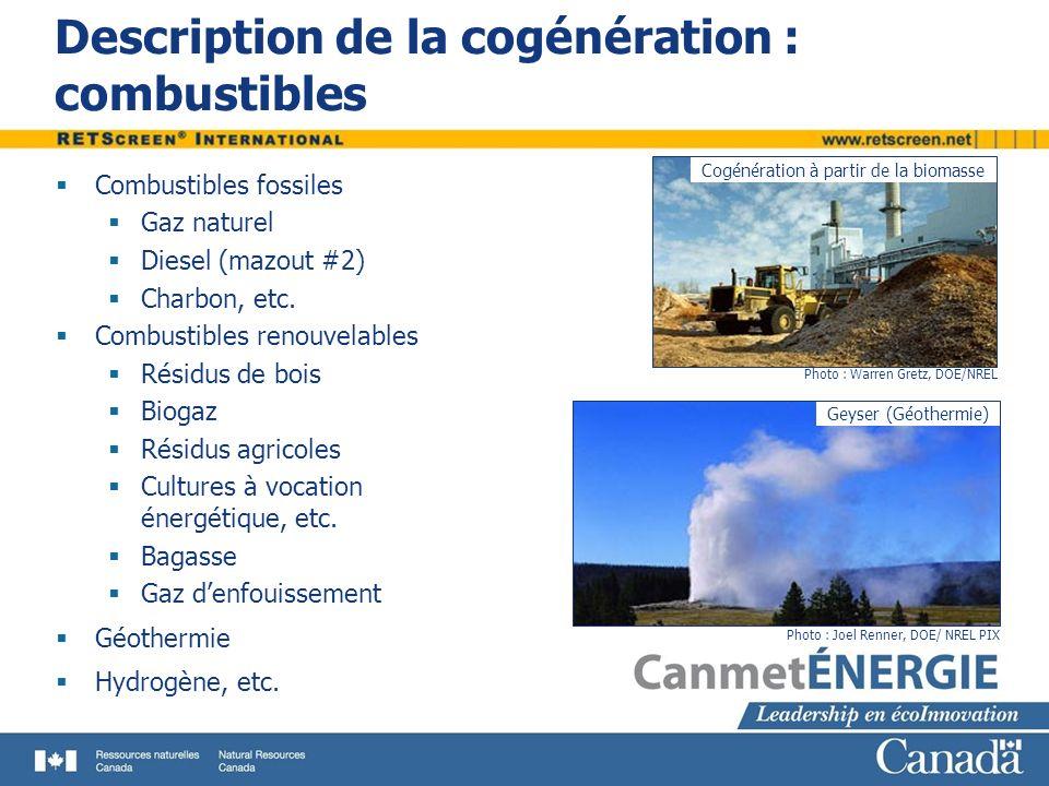 Description de la cogénération : combustibles