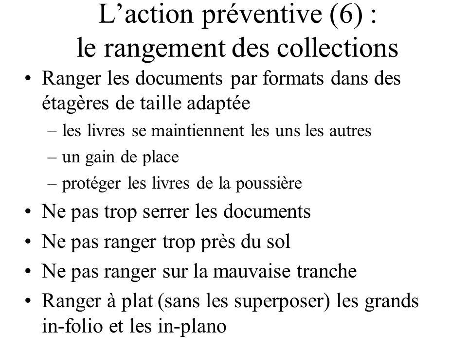 L'action préventive (6) : le rangement des collections
