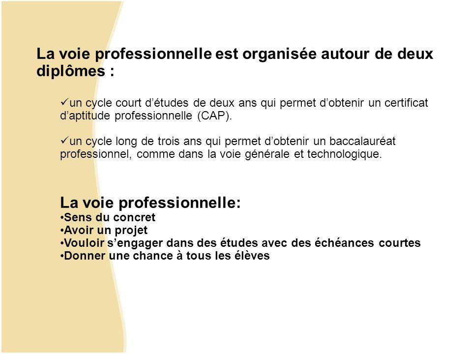 La voie professionnelle est organisée autour de deux diplômes :