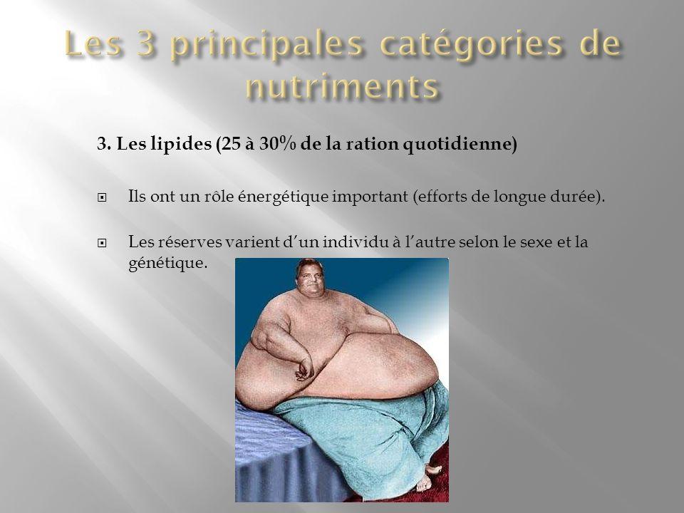 Les 3 principales catégories de nutriments