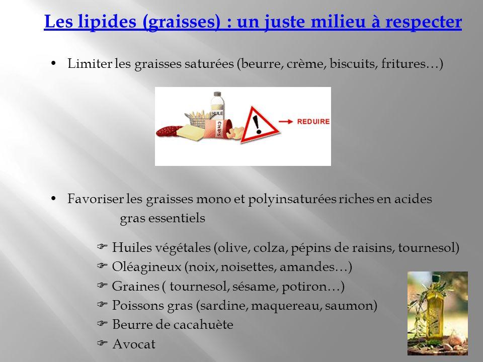 Les lipides (graisses) : un juste milieu à respecter