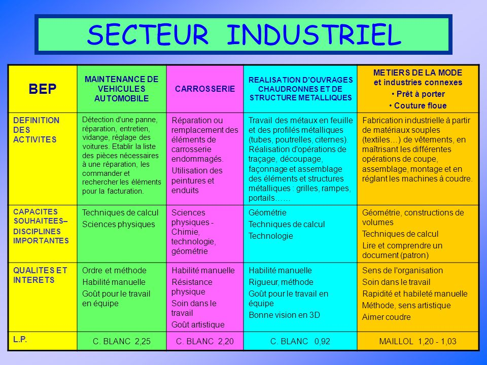SECTEUR INDUSTRIEL BEP MAINTENANCE DE VEHICULES AUTOMOBILE CARROSSERIE