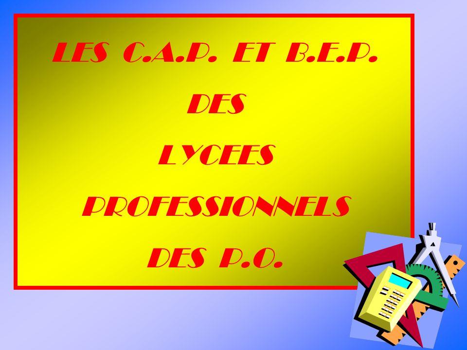 LES C.A.P. ET B.E.P. DES LYCEES PROFESSIONNELS DES P.O.