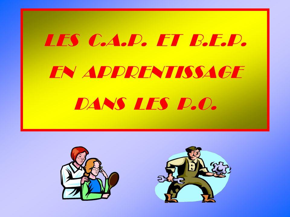 LES C.A.P. ET B.E.P. EN APPRENTISSAGE DANS LES P.O.