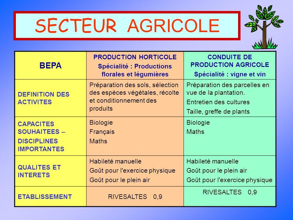 SECTEUR AGRICOLE BEPA PRODUCTION HORTICOLE