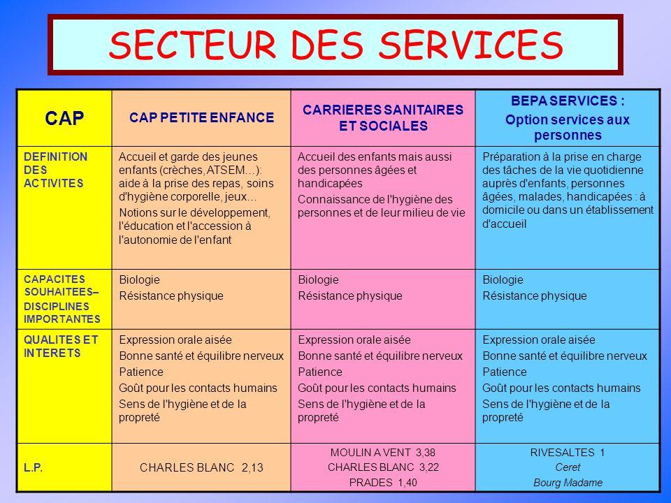 CARRIERES SANITAIRES ET SOCIALES Option services aux personnes