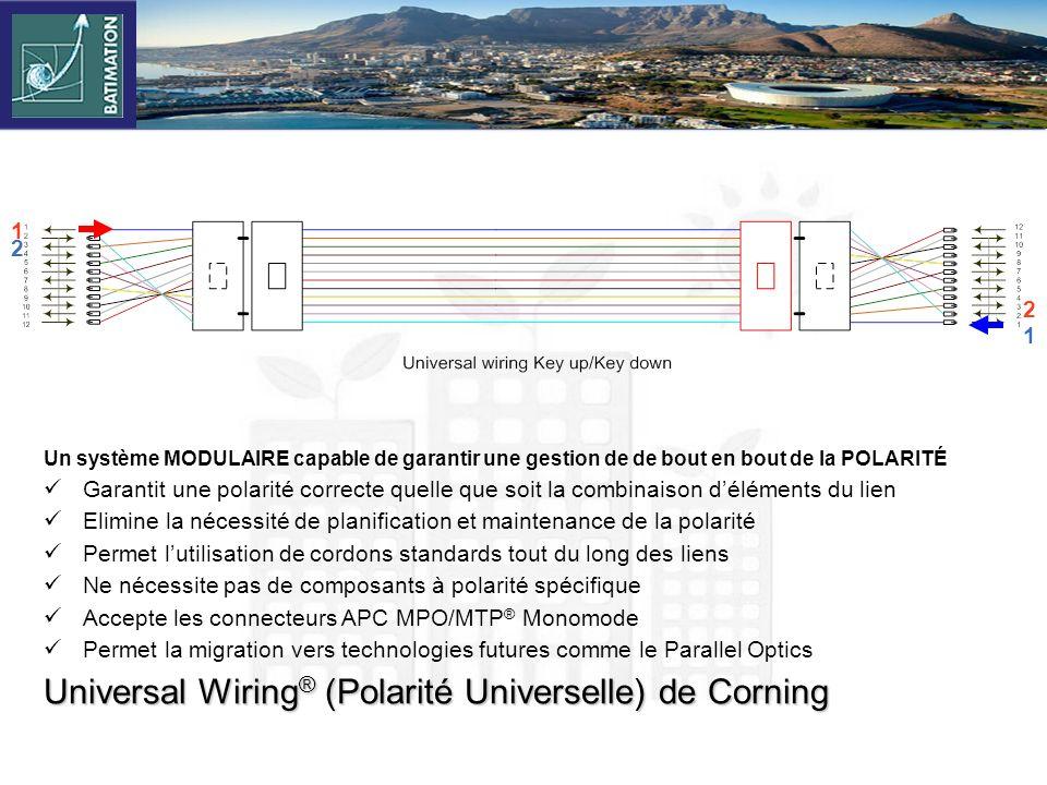 Universal Wiring® (Polarité Universelle) de Corning