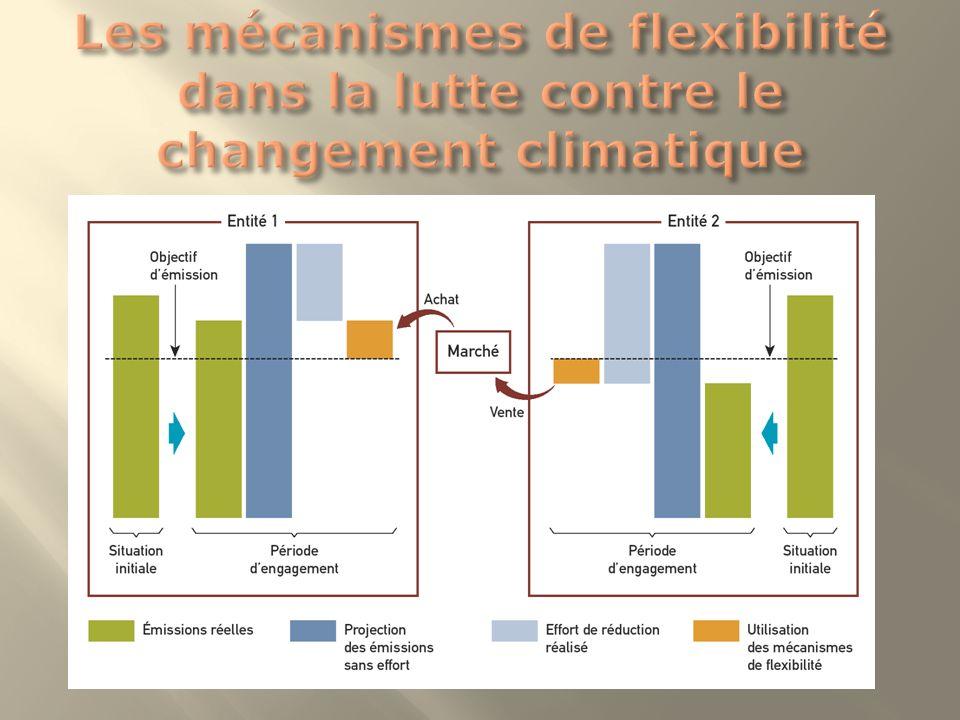 Les mécanismes de flexibilité dans la lutte contre le changement climatique