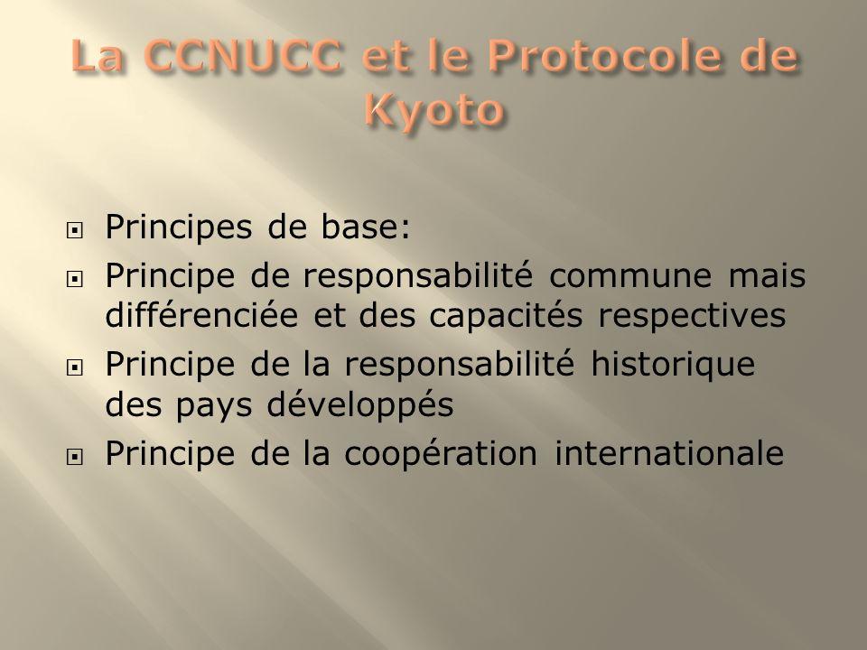 La CCNUCC et le Protocole de Kyoto