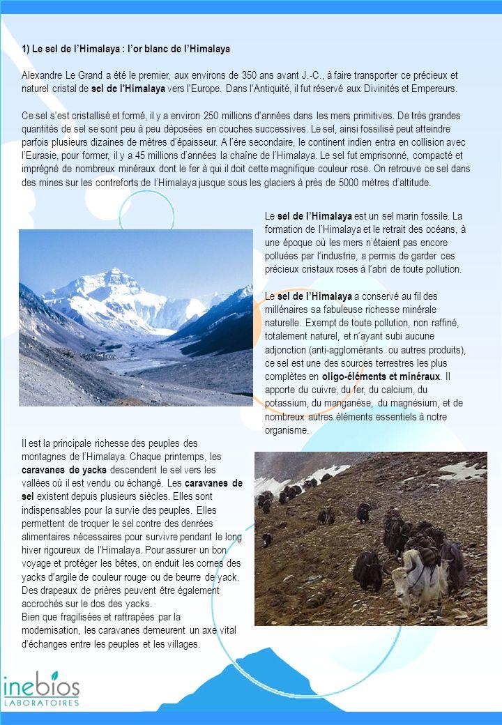 1) Le sel de l'Himalaya : l'or blanc de l'Himalaya