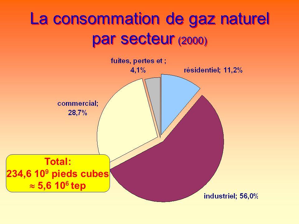 La consommation de gaz naturel par secteur (2000)
