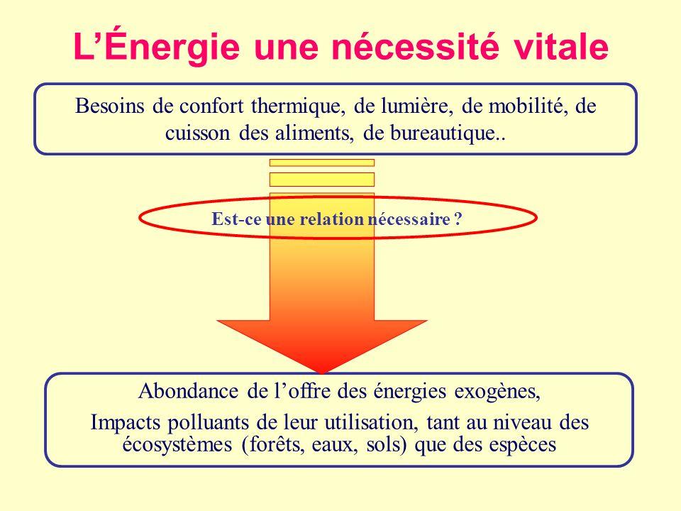 L'Énergie une nécessité vitale Est-ce une relation nécessaire