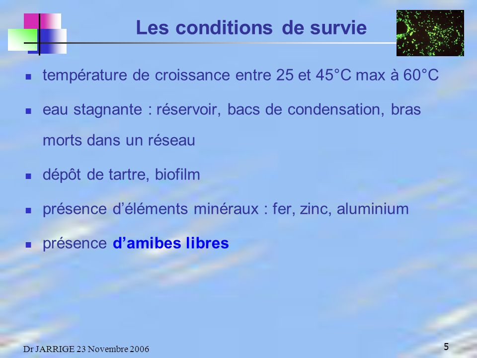 Les conditions de survie