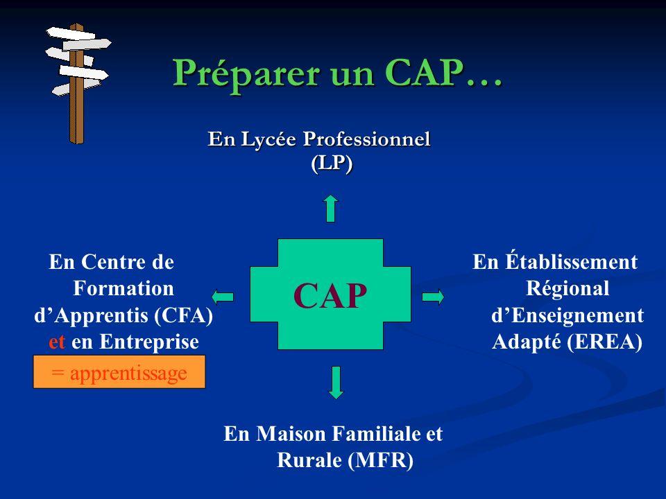 Préparer un CAP… CAP En Lycée Professionnel (LP)