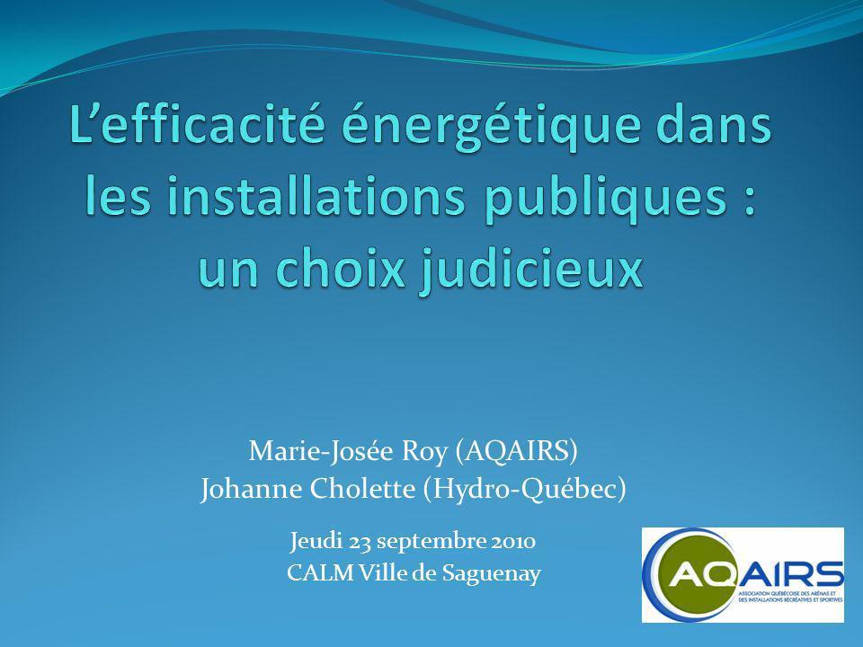 L'efficacité énergétique dans les installations publiques : un choix judicieux