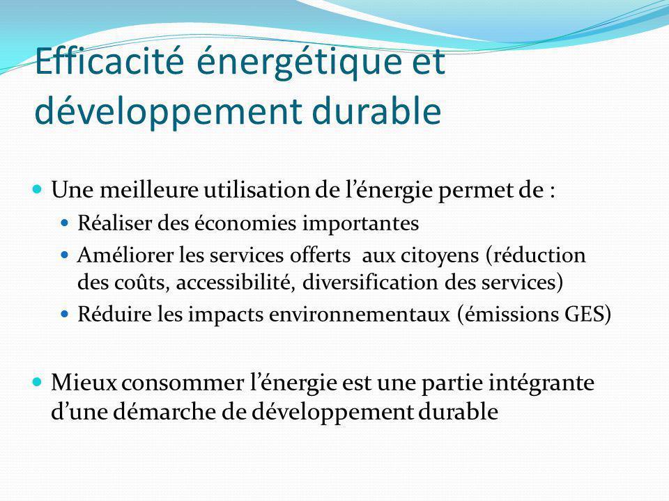 Efficacité énergétique et développement durable