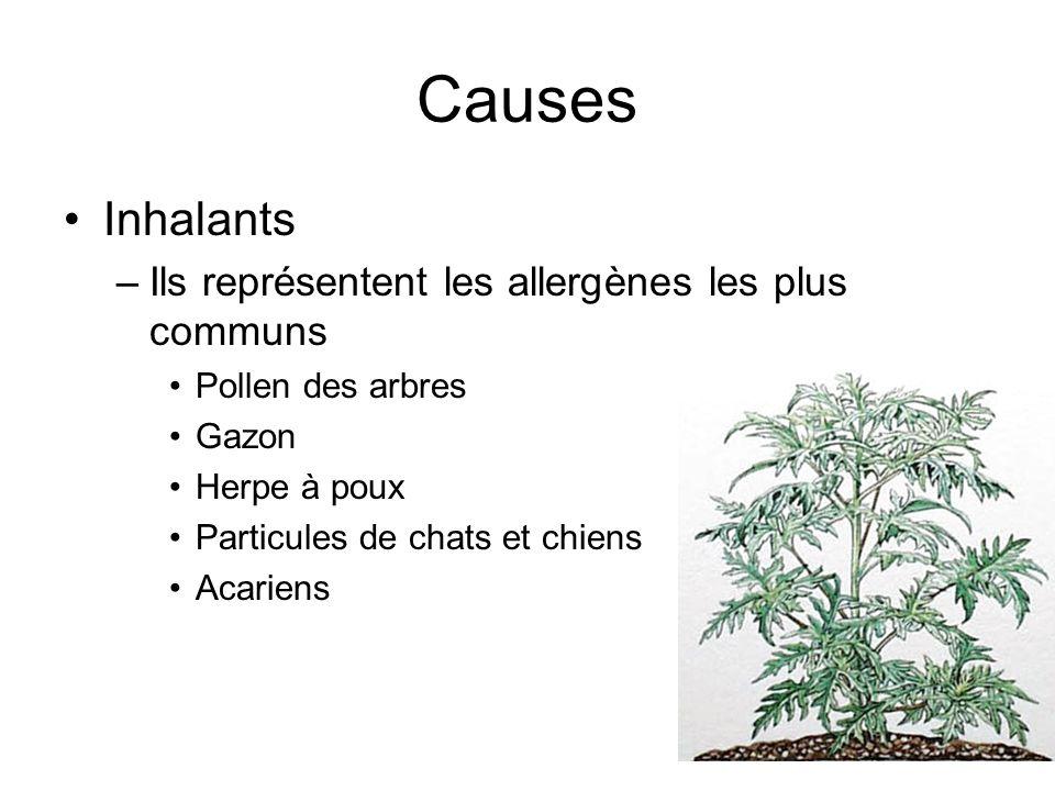 Causes Inhalants Ils représentent les allergènes les plus communs