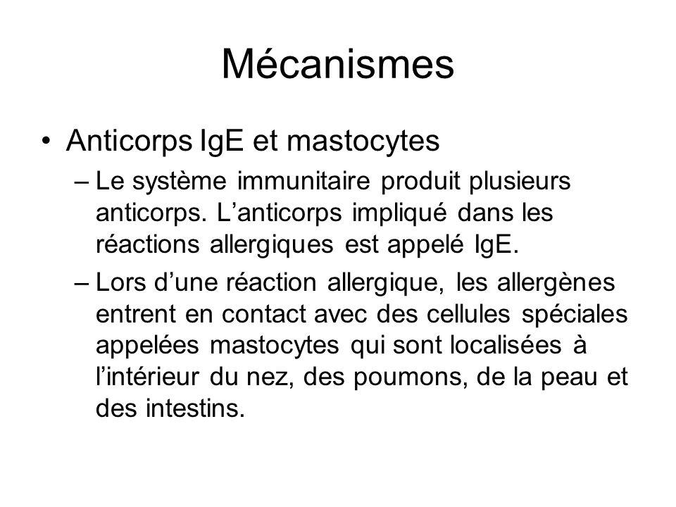 Mécanismes Anticorps IgE et mastocytes
