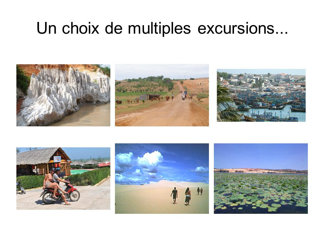 Un choix de multiples excursions...