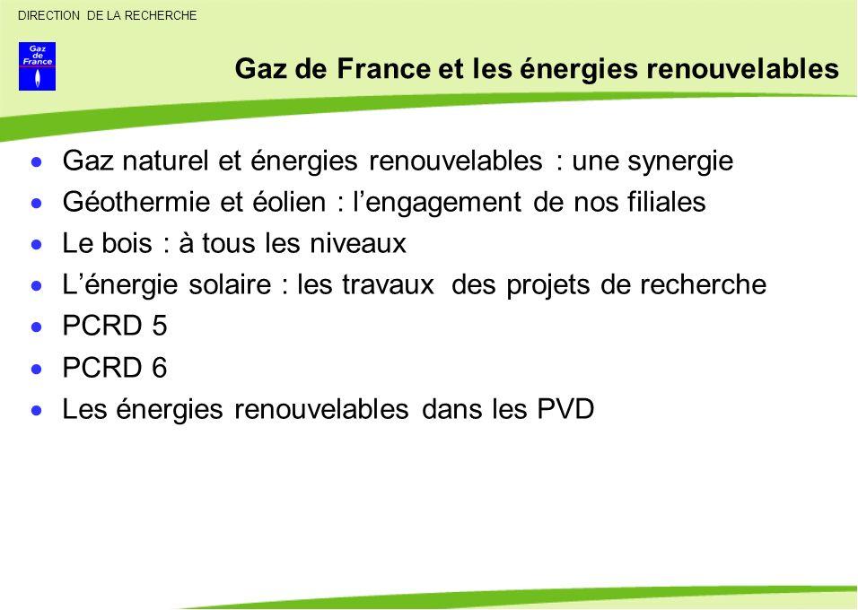 Gaz de France et les énergies renouvelables