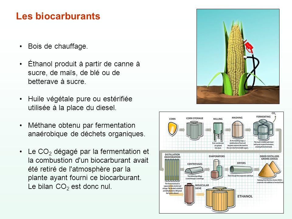 Les biocarburants Bois de chauffage.