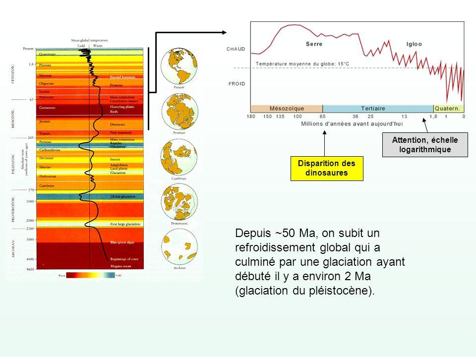 Attention, échelle logarithmique Disparition des dinosaures