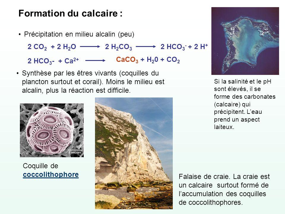 Formation du calcaire :