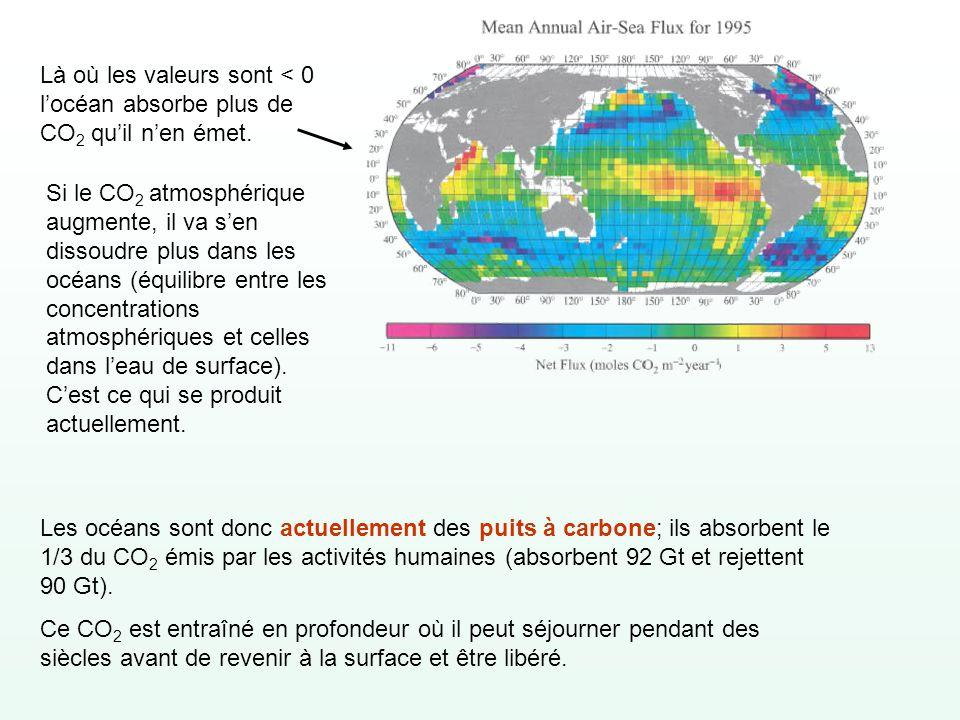 Là où les valeurs sont < 0 l'océan absorbe plus de CO2 qu'il n'en émet.