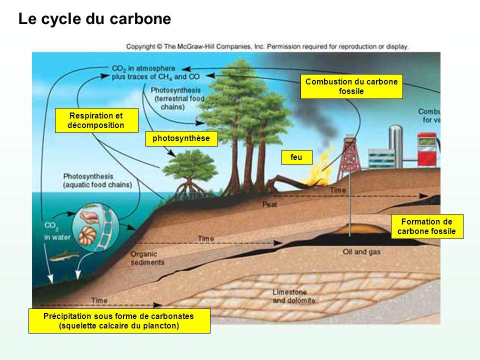 Le cycle du carbone Combustion du carbone fossile