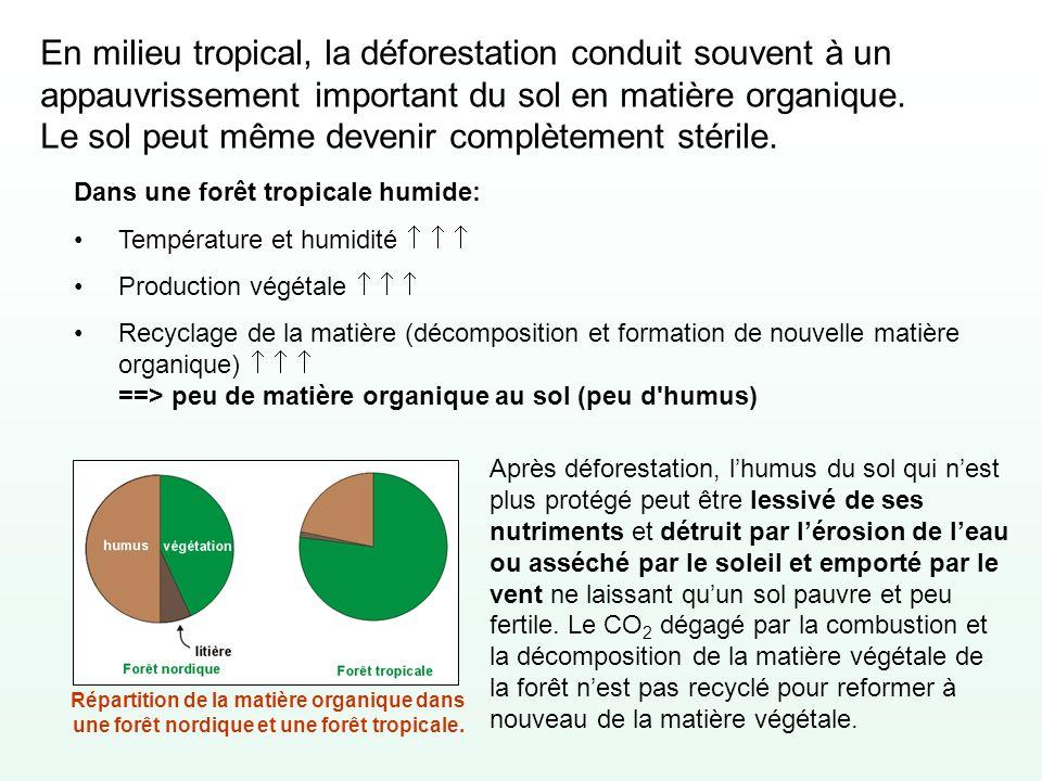 En milieu tropical, la déforestation conduit souvent à un appauvrissement important du sol en matière organique. Le sol peut même devenir complètement stérile.