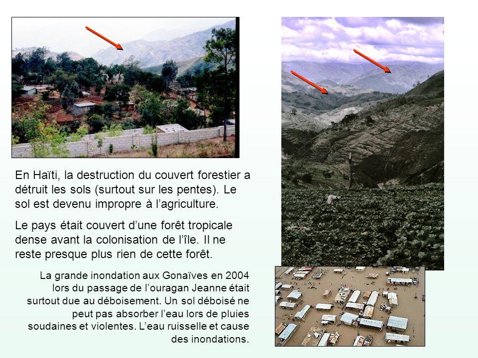 En Haïti, la destruction du couvert forestier a détruit les sols (surtout sur les pentes). Le sol est devenu impropre à l'agriculture.