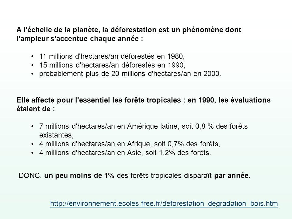 A l échelle de la planète, la déforestation est un phénomène dont l ampleur s accentue chaque année :