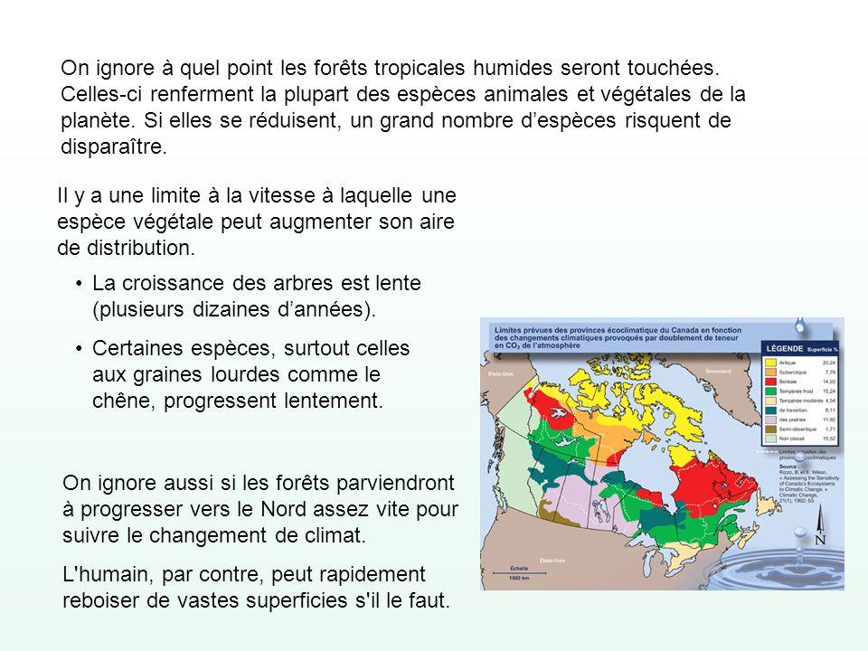 On ignore à quel point les forêts tropicales humides seront touchées