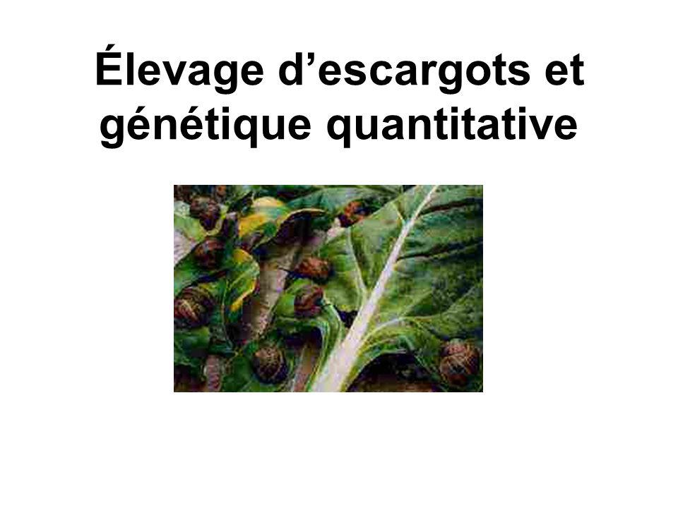 Élevage d'escargots et génétique quantitative